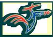 Les valeurs véhiculées par la FFTir